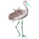 download Bird With Legs clipart image with 135 hue color