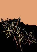 Illustration Steppengras
