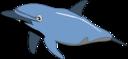 Dolphin Enrique Meza C 01
