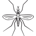 download Mosquito clipart image with 45 hue color