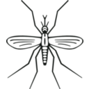 download Mosquito clipart image with 225 hue color