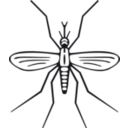 download Mosquito clipart image with 315 hue color