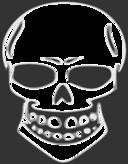 Skull Human X Ray