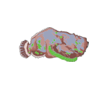 download Red Stonefish clipart image with 45 hue color