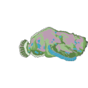 download Red Stonefish clipart image with 135 hue color