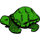 download Tortoise clipart image with 45 hue color