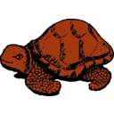 download Tortoise clipart image with 315 hue color