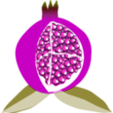 download Pomegranate Fruit clipart image with 315 hue color