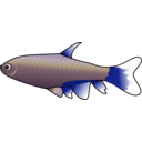 download Bloodfin Tetra clipart image with 225 hue color