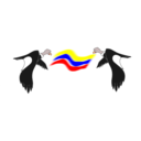 download Condor Colombiano clipart image with 0 hue color
