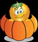 Pumpkin Smiley Emoticon