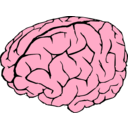 download Brain clipart image with 315 hue color