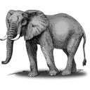 download Colored Elephant clipart image with 315 hue color