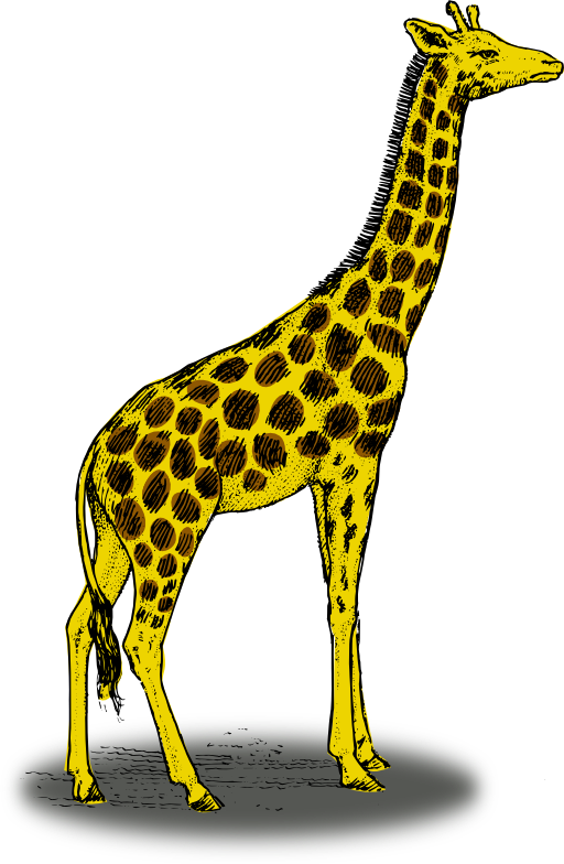 Colored Giraffe Clipart - Royalty Free Public Domain Clipart