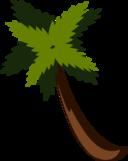 Palmtreebysteve