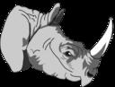Architetto Rhinoceros 1