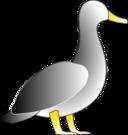 Jonathons Duck