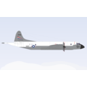 Lockheed P 3 Orion Aircraft Color