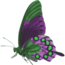 download Butterfly Papilio Philenor Side clipart image with 90 hue color