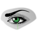 download Eye Scan clipart image with 45 hue color