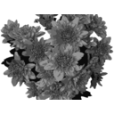 Flowers In Greyscale