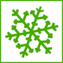 Eco Green Snow Icon
