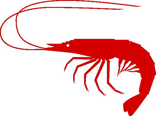 shrimp clipart i2clipart royalty free public domain free shrimp boil clipart shrimp boil pot clipart