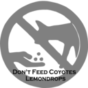 Dont Feed Coyotes Lemondrops