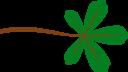 Palmate Leaf 5 Lobed
