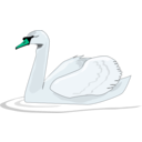 download Swan Swimming clipart image with 135 hue color