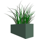 Grass In Square Planter