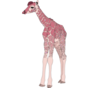 download Baby Giraffe clipart image with 315 hue color