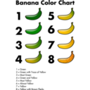 Banana Color Chart