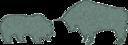 Bull Bear Variation Ii
