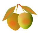 download Mango clipart image with 315 hue color
