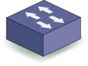 Purple Switch