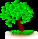 Tree Arbol