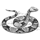 download Copperhead Grayscale clipart image with 225 hue color