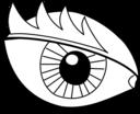 Eye Oeil