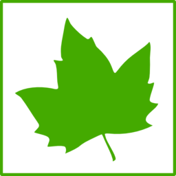 Eco Green Leaf Icon