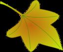 Leaf 01