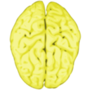 download Brain clipart image with 45 hue color