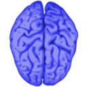 download Brain clipart image with 225 hue color