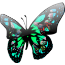 download Butterfly Effect clipart image with 135 hue color