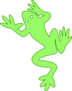 Frog 03