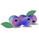 download Blueberry clipart image with 45 hue color