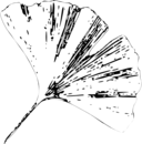 Gingko Leaf E