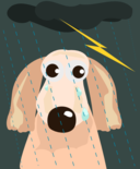 Sad Dog In The Rain