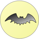 Bat In Front Of Moon