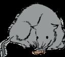 Agu Pig